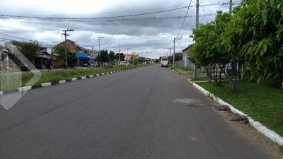 Terreno - Mato Grande - Ref: 222243 - V-222243