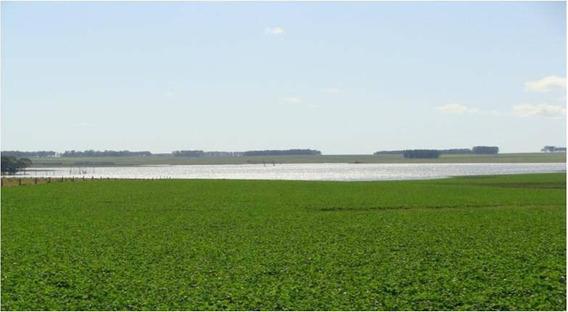 Fazenda Com 2767 Hectares Em Lavalleja - Uruguai