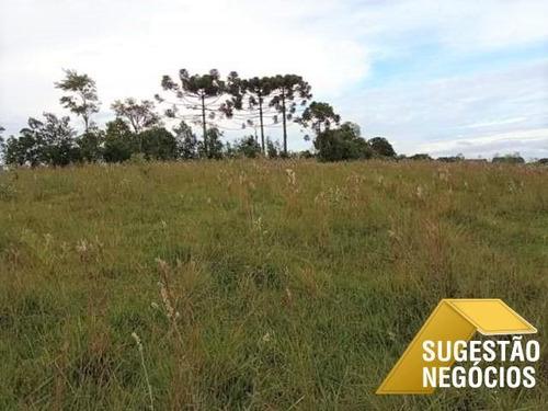 Área Agrícola Excelente Localização E Topografia - 3735