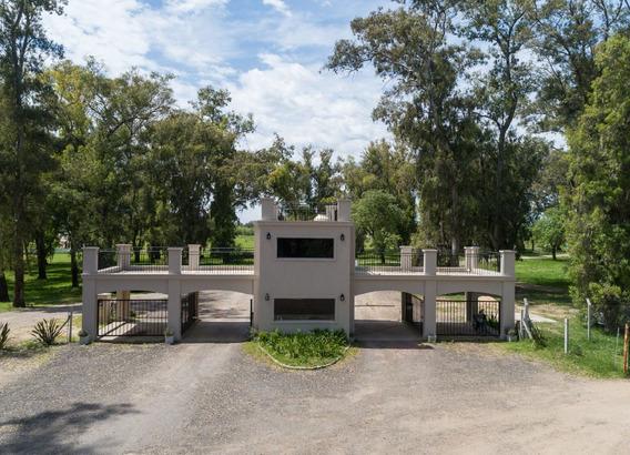 Comarcas De Luján Santa Inés, Luján