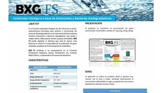 Biodigestor Bacteria Enzimas Degradadoras Fosas Sépticas 1k