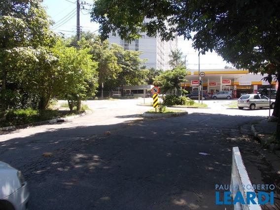 Terreno - Alto De Pinheiros - Sp - 412867