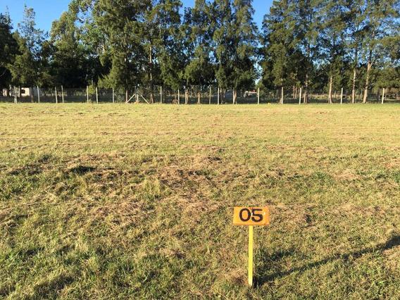 Vendo Terreno En La Plata, Abasto, Ruta 36 Y 38. 20x40.