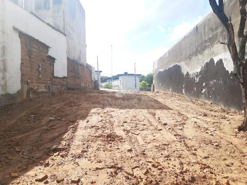 Terreno Á Venda E Para Aluguel Em São Bernardo - Te005783