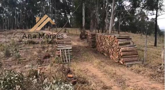 Terreno Para Venda Em Tuiuti, Zona Rural - 064_1-1342396