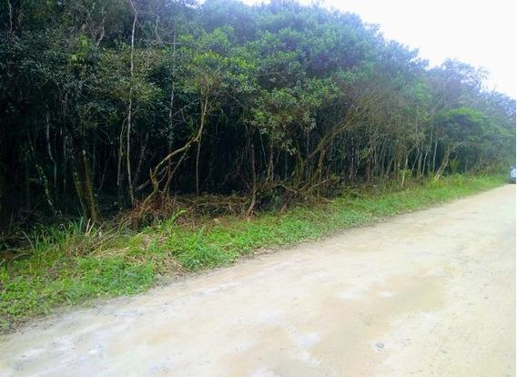 Terreno Em Itanhaém Gaivotas Rio Preto