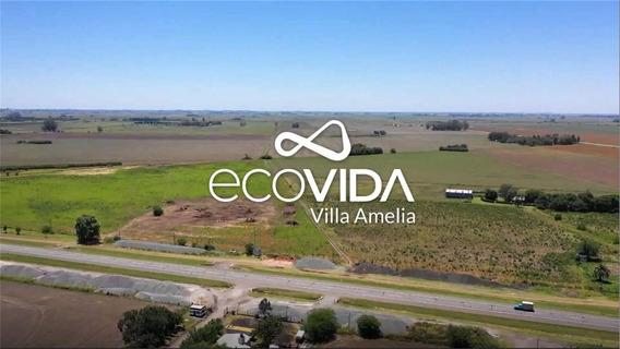 Terrenos 577m2 Barrio Ecovida Villa Amelia