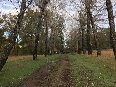 Camino Villarrica - Pucón 13000