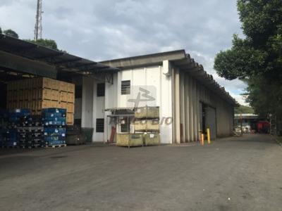 Galpao Industrial - Barro Branco - Ref: 3576 - V-3576