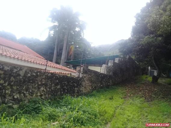 Casas En Venta Palmarito 04166467687