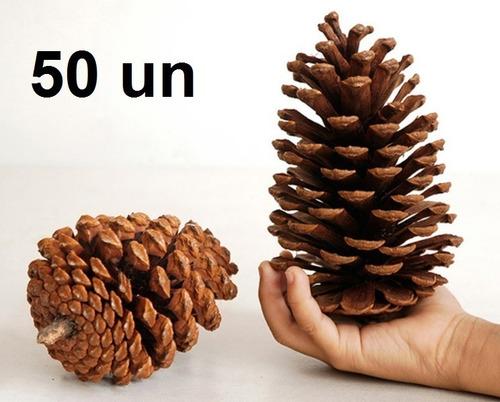 50 Pinhas Natural In Natura Enfeite De Natal Artesanato Oferta Festa Eventos Pinha Pinos Pino Decoração Guirlanda