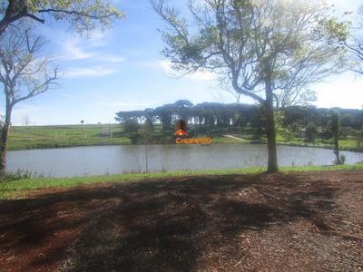 Terreno - Fazenda Guatapará - 1233