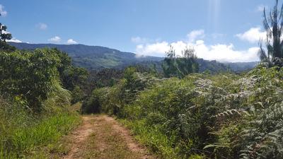 Venta De Terreno Agrícola En Villa Rica