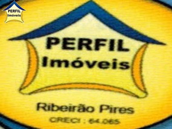 Ouro Fino Paulista - 2797