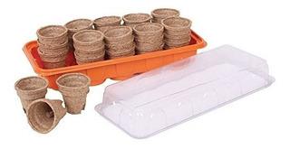 Twigz Mini Invernadero Para Niños Jardinería