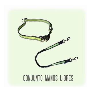 Conjunto Manos Libres / Cinturon + Correa Elastizada