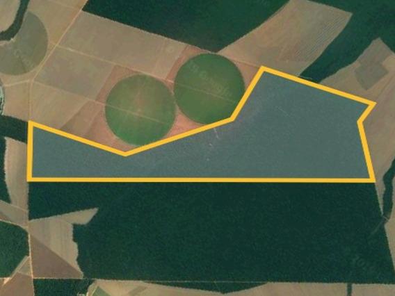 Fazenda 1.000 Hectares Em Sorriso Mt Mato Grosso