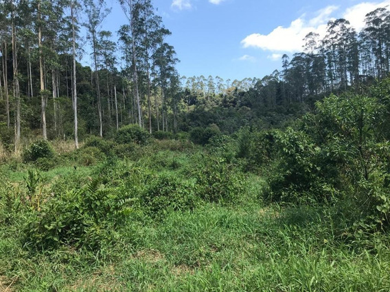 Fazenda À Venda, 2565200 M² Por R$ 1.100.000 - Eldorado - São Paulo/sp - Fa0182