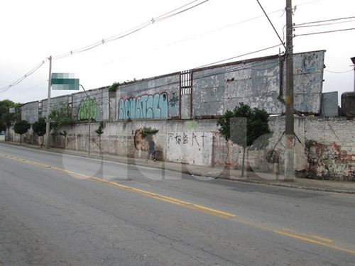 Locação Terreno Sao Caetano Do Sul Vila Sao Jose Ref: 4466 - 1033-4466