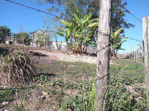 Terreno - Vila Bonfim - Ref: 6915 - V-6915