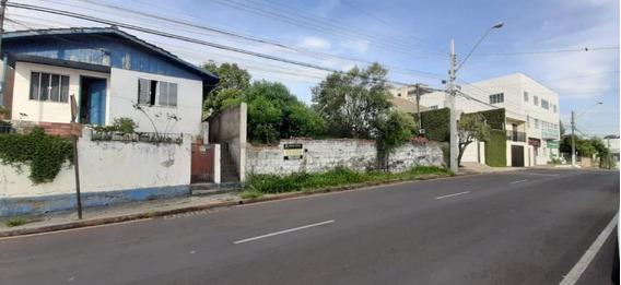 Terreno Para Venda Em Guarapuava, Trianon - _2-995876