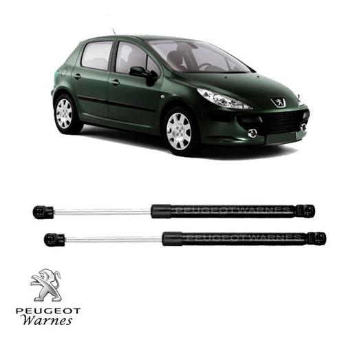 Juego 2 Amortiguadores A Gas Porton De Peugeot 307