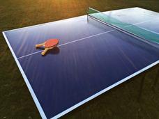Alquiler Mesa De Ping Pong Para Cumpleaños O Eventos