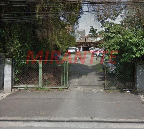 Terreno Em Santana - São Paulo, Sp - 331454