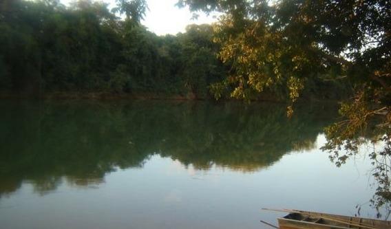 Vendo Chácara Com Belo Pomar Próximo Ao Rio Pará