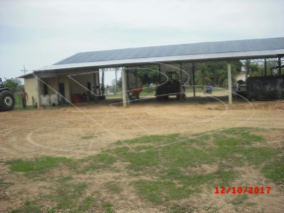Fazenda Para Venda : Ref:020454.07 - 020454.07