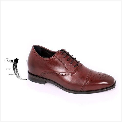 Zapato Formal British Vino Max Denegri +7cms De Altura