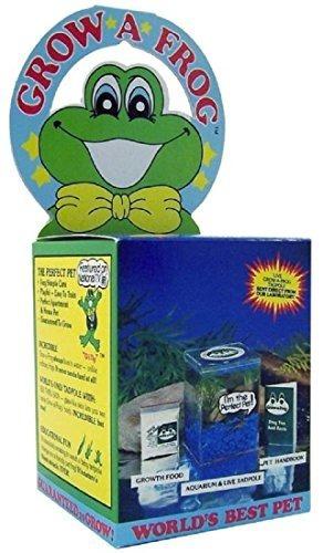 Olympia Sports 11832 Kit Grow-a-frog