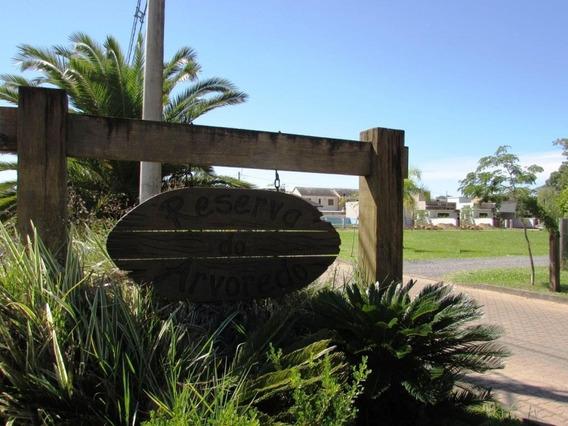 Terreno Residencial À Venda, Reserva Do Arvoredo, Gravataí. - Te1879