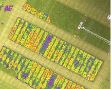 Processamento De Imagens Geradas Por Drones E Vants