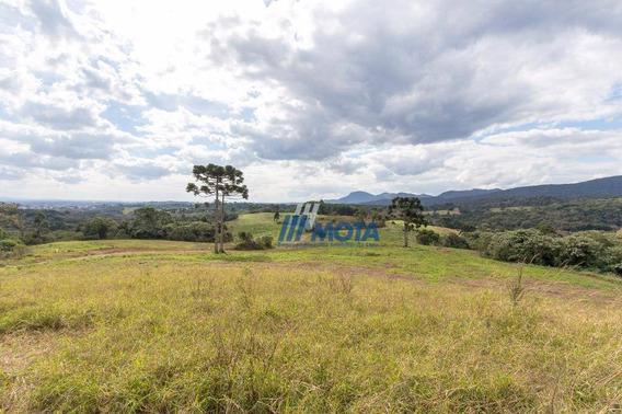 Área Rural À Venda, Piraquara. - Ar0031