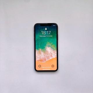 iPhone Xs 256 Con Caja + Garantía Extendida + Funda Cargador