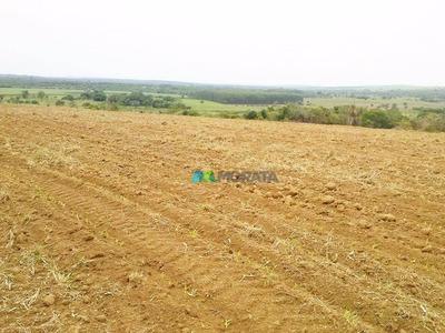 Fazenda 500 Ha Bom Despacho (mg) - Cod: Mta798