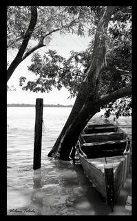 Quadro De Fotografia Preto E Branco Barco Ancorado