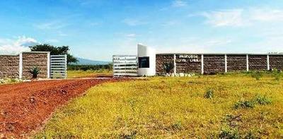 Desarrollo En Huaquechula Ubicado Junto Reserva Ecológica