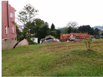 Maravilhoso Terreno, Swiss Park, São Bernardo Do Campo. - Te0196