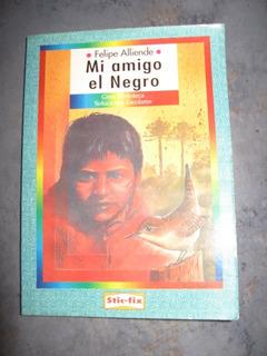 Mi Amigo El Negro , Felipe Allende