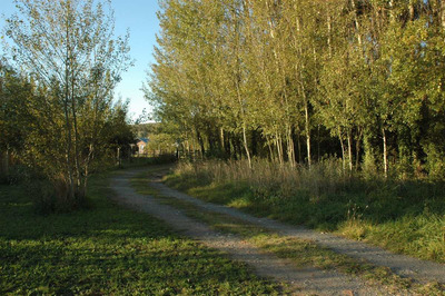 Excepcional Terreno En Tandil Zona Don Bosco