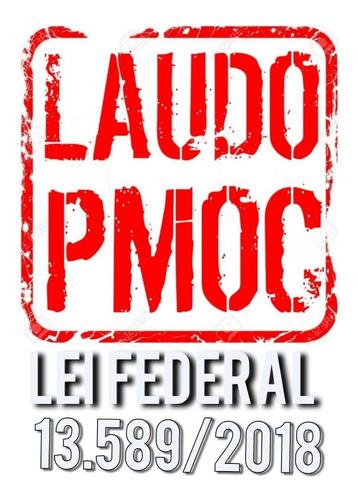 Laudo Pmoc