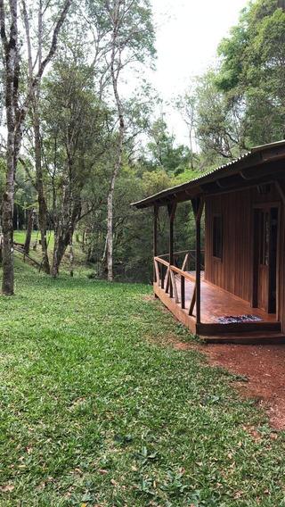 Lotes En Plena Selva Misionera Con Todos Los Servicios