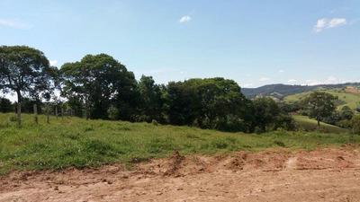 Terreno À Venda Em Bom Jardim - Te250702