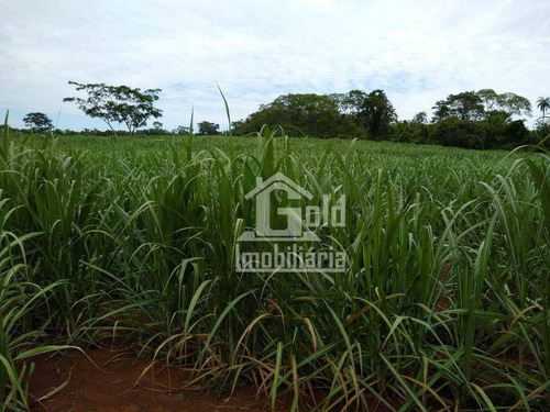 Imagem 1 de 3 de Fazenda À Venda, Com 51,6 Alqueires Por R$ 8.300.000 - Zona Rural - Santa Cruz Da Esperança/sp - Fa0249