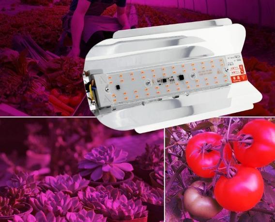 Luminária Chip Full Spectrum 30w 110/220v Para Plantas
