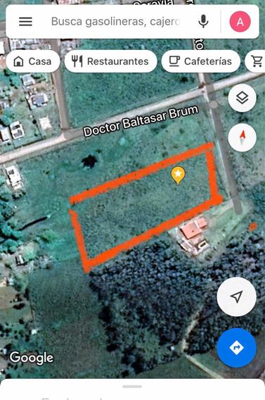 6 Terrenos Urbanos Pueblo Centenario ( Upm 2)