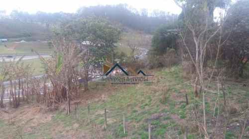 Imagem 1 de 13 de Oportunidade!!! Excelente Localização, Na Beira Da Raposo - 81