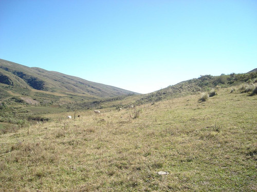 Imagen 1 de 7 de Hermoso Campo En Balcosna Catamarca